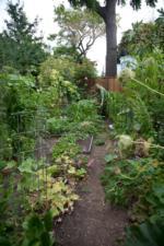 Birgitts Garden by Lori Eanes