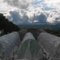 ACMG hoop rows after an April rain
