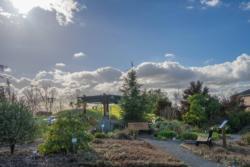 livermore_garden