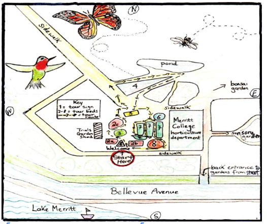 Lake Merritt Self Guided Garden Tour MAP