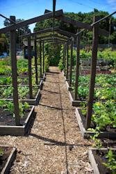 GardenLayout