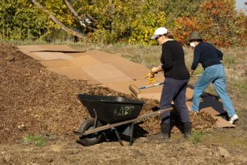 Quarry Lakes Sheet Mulching